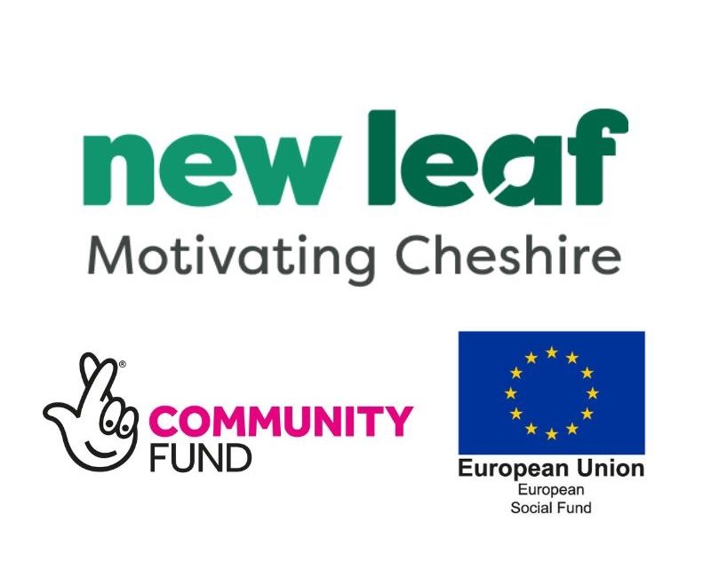 New Leaf: Celebrating our Participants