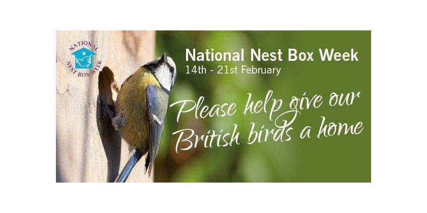 The T-Club Celebrate National Nest Box Week by Building Nest Boxes